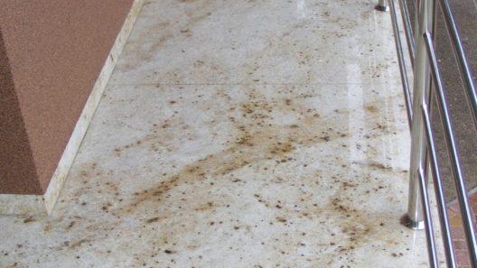 podłoga z kamienia naturalnego